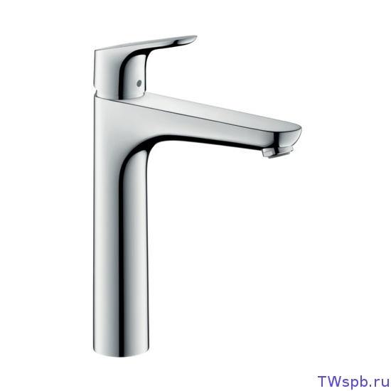 Hansgrohe Focus 31608000