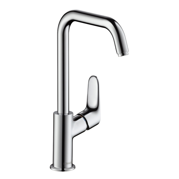 Hansgrohe Focus 31609000